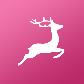 bed-our-office-in-bude-deers