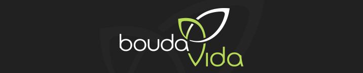 boudavida-logo-design